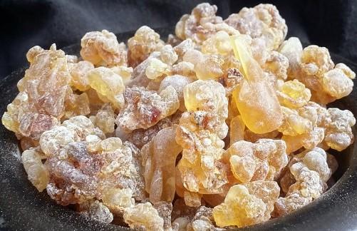 Boswellia Serrata huge chunks of resin