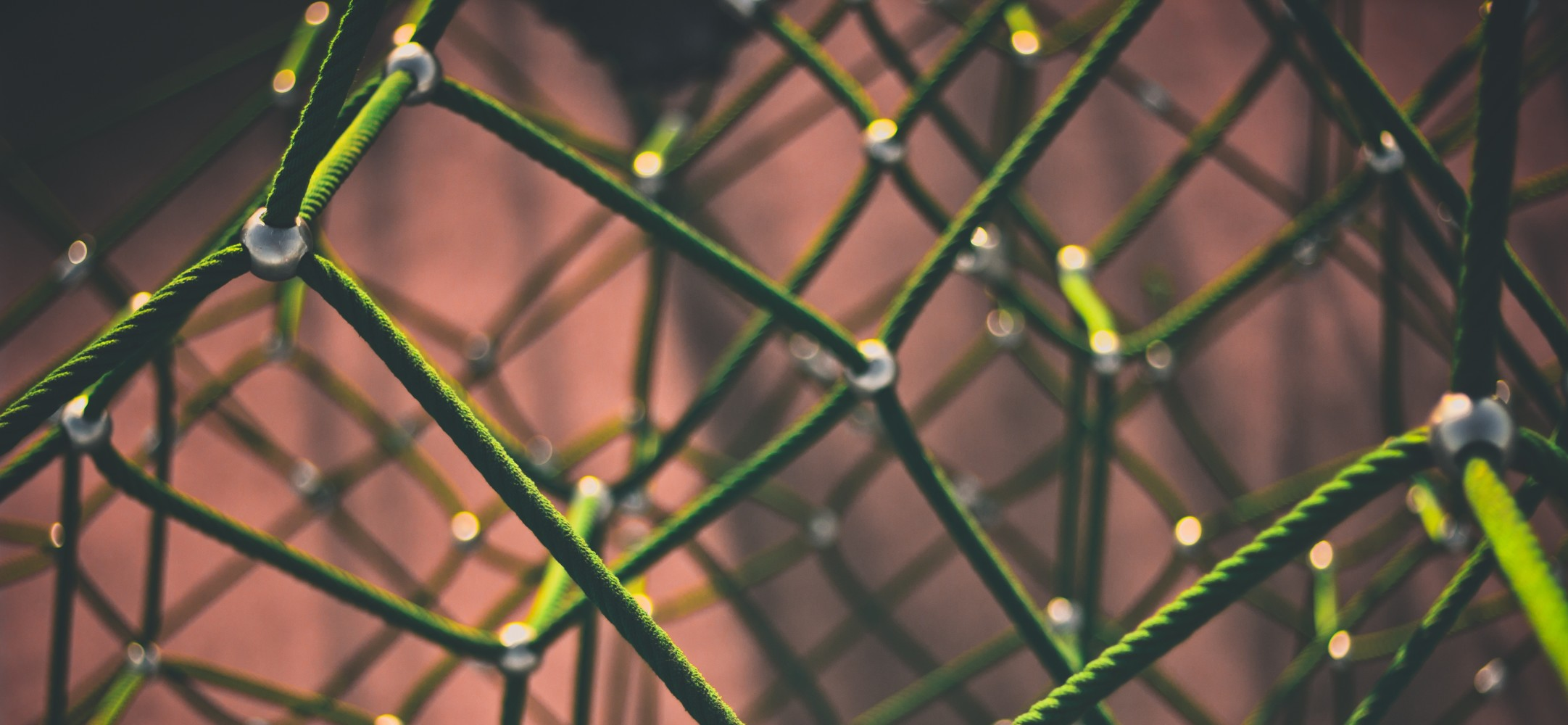 Networking: IP Address vs DNS vs DHCP