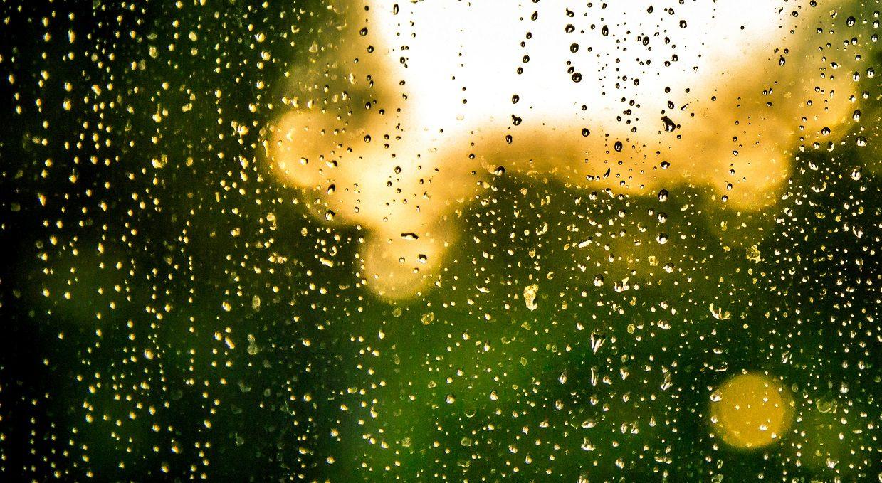 1. Bangla Poetry | Rain - বৃষ্টি