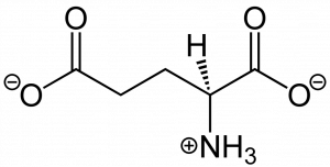 The chemical molecular structure of L-Glutamate