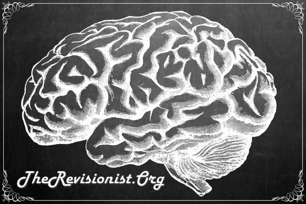 brain on chalk board