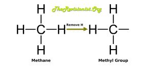 What is Methylation? Why is it Important for the Human Body?
