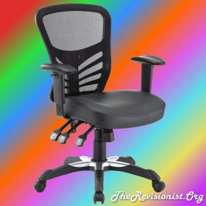 fully adjustable ergonomic chair