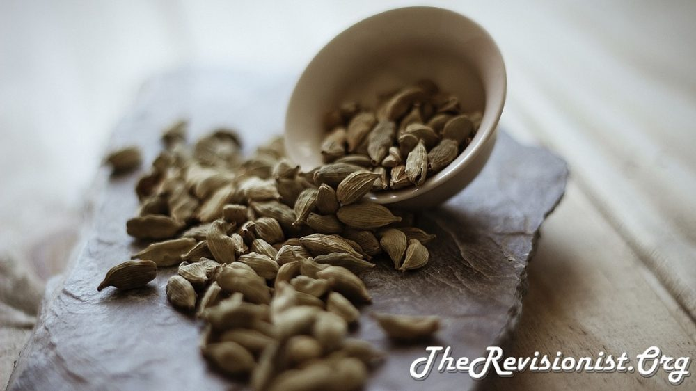 Cardamom Elettaria - Identification, Uses, Medicinal Properties, & Role in Cognition