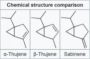 Alpha-thujene, beta-thujene, and sabinene side-by-side