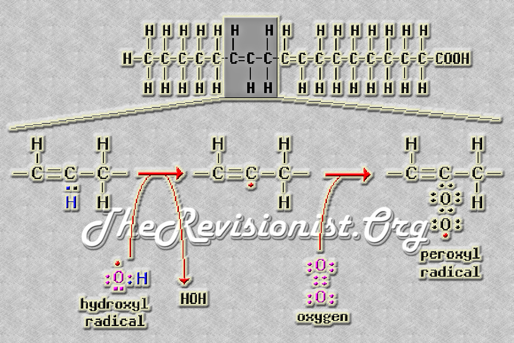 Diagram depicting lipid peroxidation