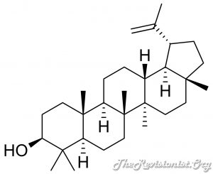 Diagram showing Chemical Structure of Lupeol