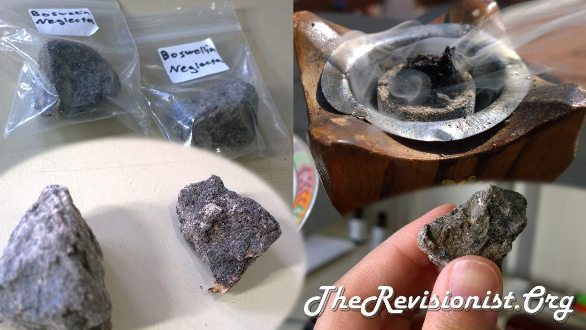 Black frankincense Dakkara or Dakkar incense from Kenya (Boswellia Neglecta)