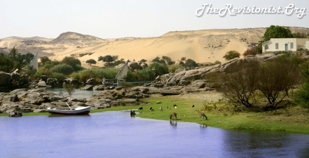Aswan Nile River Bank Lush Greenery