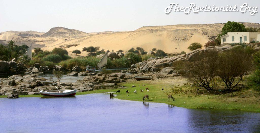 Aswan Nile River Bank Lush Greenery