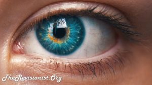 Blue Yellow Iris Blonde Eyelash Veiny Red Eye