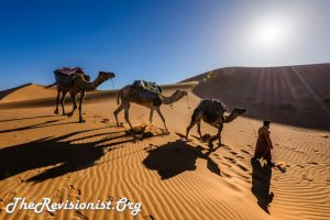 Harsh Sunlight UV Rays Camel Chain Bedouin in Desert